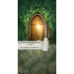 Backdrop fairyland AS0126