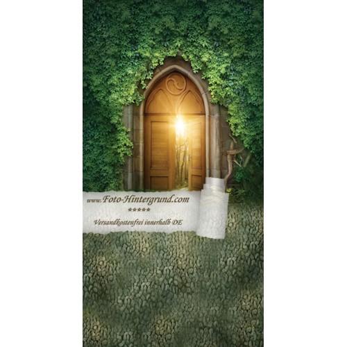 Backdrop fairyland AS0126